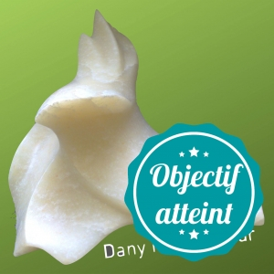 photo profil objectif atteint danyio
