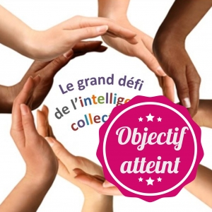 photo profil objectif atteint ressources mediation